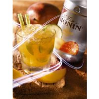 puree-de-mangue-monin-1l-ambiance